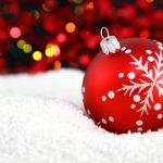 クリスマスお正月に初心者失敗ナシ圧力鍋で10分紅茶豚レシピ