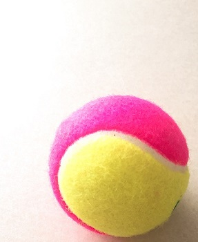 tennisboal00